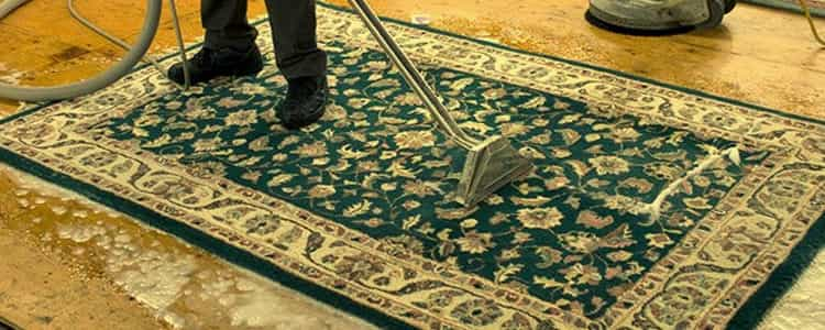 Best Rug Cleaning Burwood